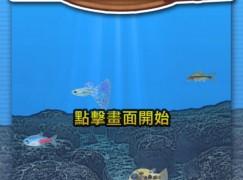 幼童認識魚世界