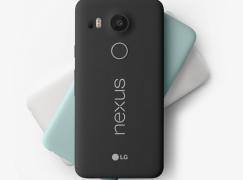 親生仔 Nexus 5X 可預購喇