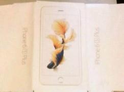 【劇透系列】iPhone 6S 包裝盒多條魚!?