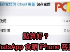 WhatsApp 食盡 iPhone 容量有解決