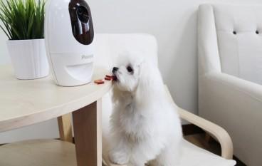 遙距陪住毛小孩 無線高清鏡頭餵食玩樂攝錄三合一