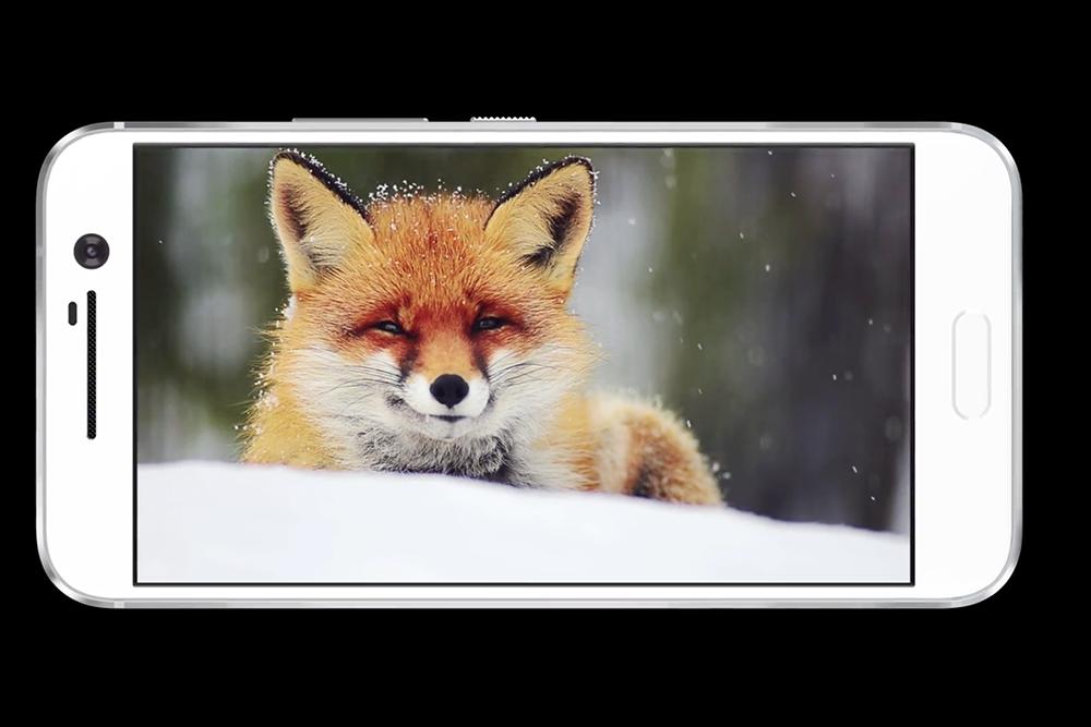 使用 5.2 吋、2K解像度 SLCD5 屏幕。