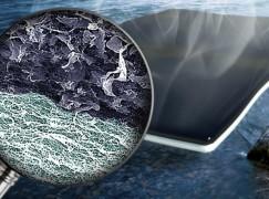 【唔使飲鉛水了?】「生物濾紙」實行低成本海水化淡