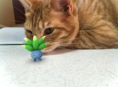 【 Pokemon Go 】搵埋寵物捉精靈 (>o<)