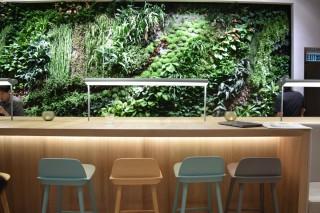 「植生牆」為環境增添綠色活力。