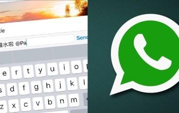 WhatsApp 新功能 群組 Tag 返「潛水友」