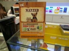 【場報】多機監控 寵物定位追蹤服務