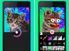 自己 GIF 圖自己整 Android 推 Giphy Cam