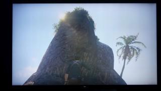 逆光的石山比較: PS4