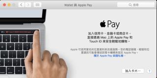 Apple Pay 設定信用卡界面,靚仔過其他界面好多啫…