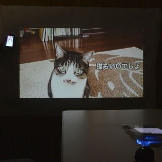 可投影出 WVGA 解像度、2000:1 對比度、80 流明的畫面,最大更可去到 120 吋。
