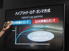 一個信號兼容 HDR 與非 HDR 電視廣播都用得!