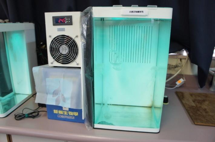 水母飼養涉及多種 STEM 元素,只要想想魚缸中的水溫和水流,就可以理解。