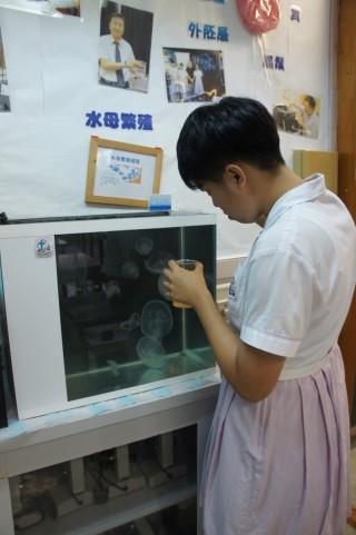 水母由飼養至培育,甚至外出實習,也 是老師們熱心帶領學生的功勞。