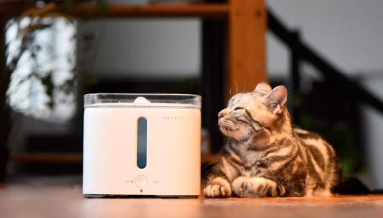 主子好 貓奴好 EVERSWEET 智能寵物飲水機