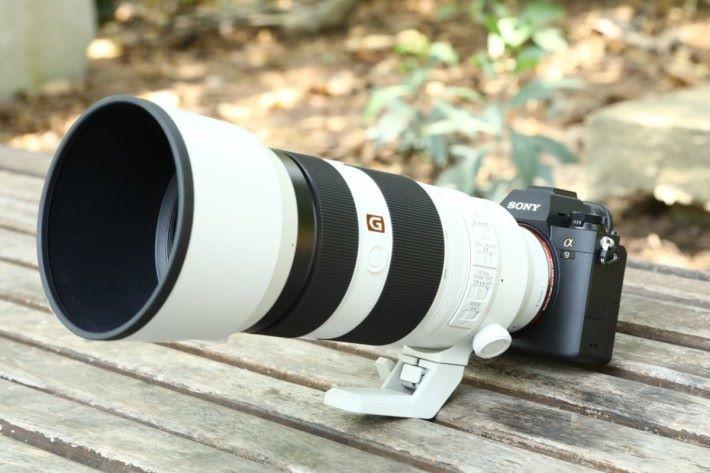 .試拍時同時有新發表的 100mm-400mm GM 鏡,對焦反應快,而且鏡身不算重,配搭 A9 手持也不覺頭重尾輕。