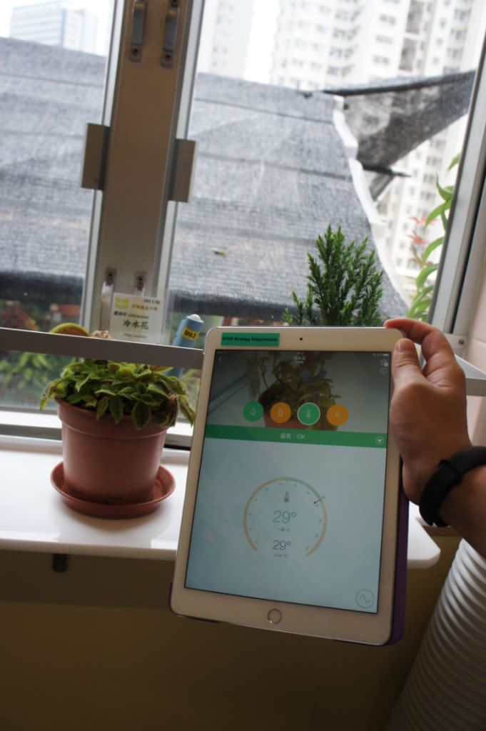 學校注重教授科技如何在生活上應 用,圖中是運用科技監測植物與環境 的變化關係。