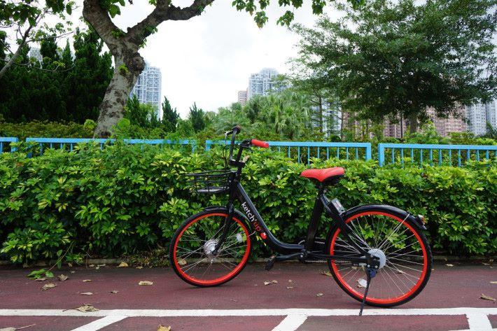 車主付出 1,600 港元買下的共享單車,就是這款紅黑設計的智能單車,內建 GPS,可用 app 追蹤位置。