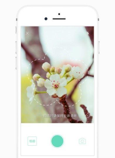 透過相機拍攝,然後分析花卉種類。