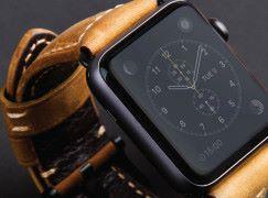 型格軍事風 Uniq Kronos Apple Watch 錶帶