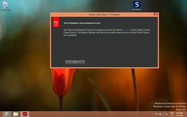 不少瀏覽器都要自行安裝 Flash Player 才能使用。