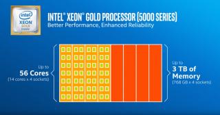 高階的 Gold 級有分兩個系列。