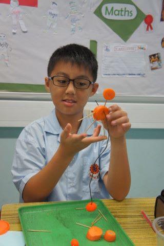 馬孝文正製作胡蘿蔔小人的平衡實驗。