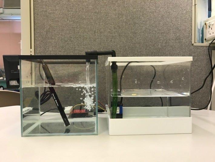 利用此裝置就能時刻確保海洋生態水族箱內的海水鹽度,維持在一個穩定的水平,這對養殖海洋生物會十分便利及安全。