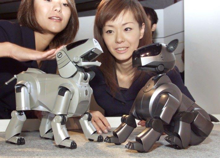 早在 90年代,Sony 已經著手機械寵物的開發,但礙於技術的發展,有關開發在 2006年正式中止。