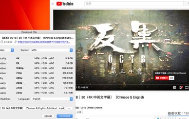 《反黑》今晚下架 YouTube 4K 下載全攻略