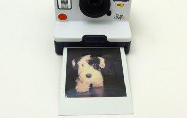方型相紙專利戰 Polaroid 控告 Fujifilm 侵權
