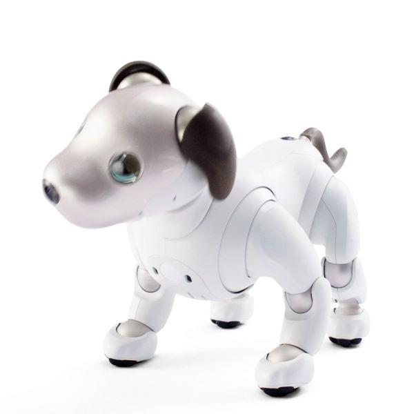 Sony 發表新一代電子寵物 aibo