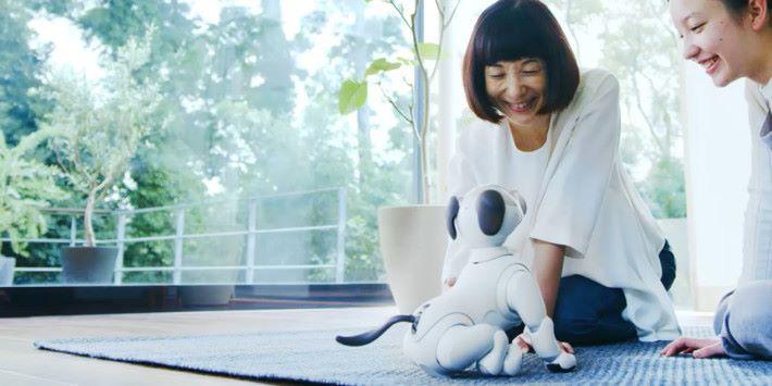 透過人工智能的幫助,新 aibo 能透過和身邊 人和事的互動而發展自己的性格。