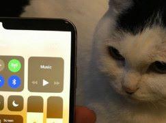 iPhone X 換了新髮型 ?