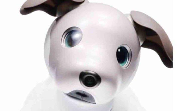 眼睛是 OLED ,能顯示不同的神情。而鼻子就裝有攝影機