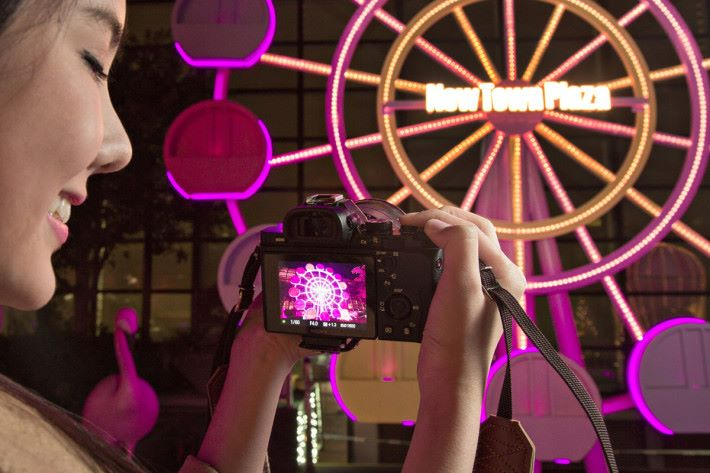 把相機改成紅外線攝影後,實時拍攝也會看到相片的效果。