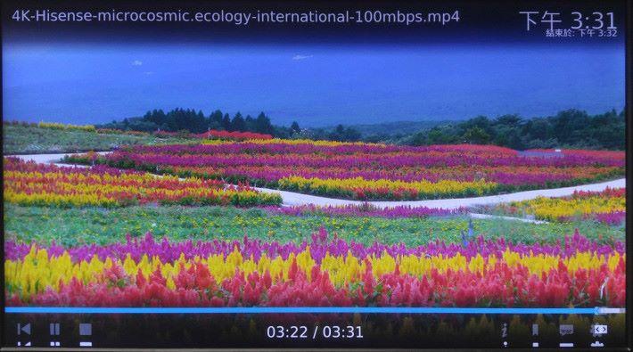 使用 KODI 即可直接播放 NAS 內的多媒體影片,播放 100Mbps Bitrate 的 H.264 或 80Mbps 之 H.265 影片均十分流暢。