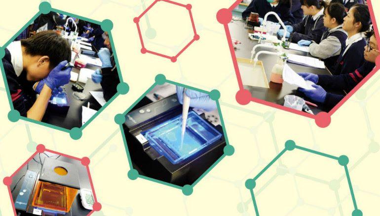 STEM 與 DSE 生物科技(下)