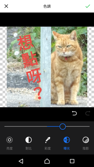 App 內亦有簡單的相片調整功能,提供亮度、對比、彩度及曝光等調功能。