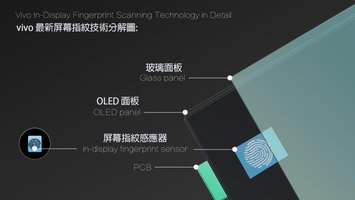 使用了 Synaptics 光電指紋方案為基礎研發。
