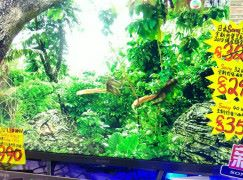 【場報】Sony 32W660E TV 三千有找