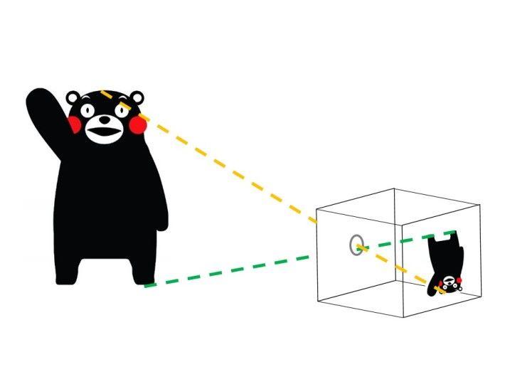 光學原理是通過針孔鏡頭所產生倒立的影象。