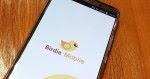 Birdie_mobile_01