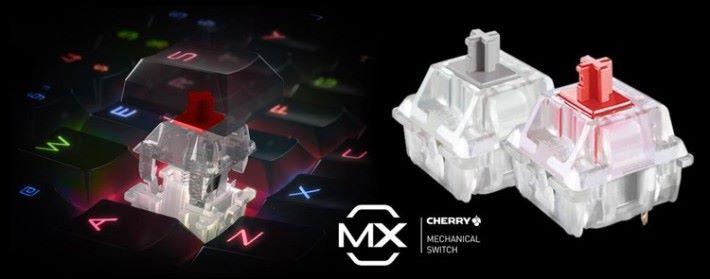 可選 Cherry MX 紅軸或銀軸。