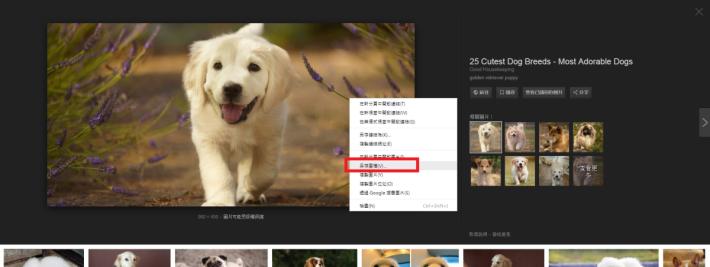 雖然Google移除了「圖片」按鈕,但右按「另存圖檔」亦能下載圖片。