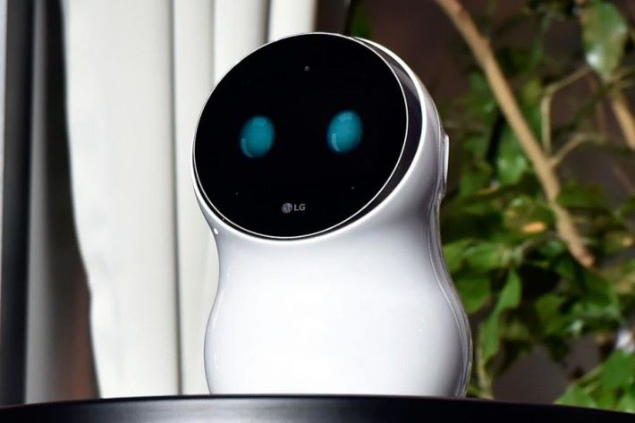 LG 在今年 1 月的 CES 展出這款 Cloi 機械人,但它不會走動,而且據說出現連番失誤。