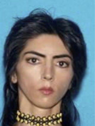 當地警方發布疑兇照片,她是 39 歲的女 YouTuber Nasim Najafi Aghdam 。