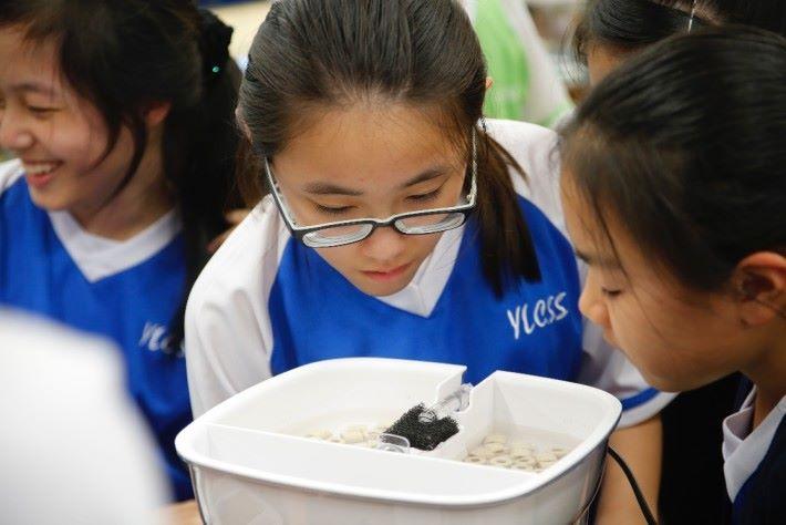 學生們正了解水循環的實驗。
