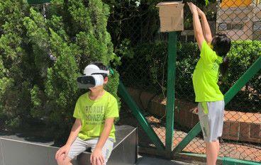 今翅 VR 可觀鳥