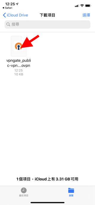 4. 在《檔案》程式的「下載項目」資料夾裡,點擊剛才下載的 .ovpn 檔案;